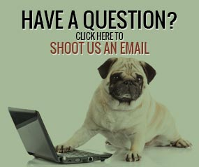 Click Here to Send an Email